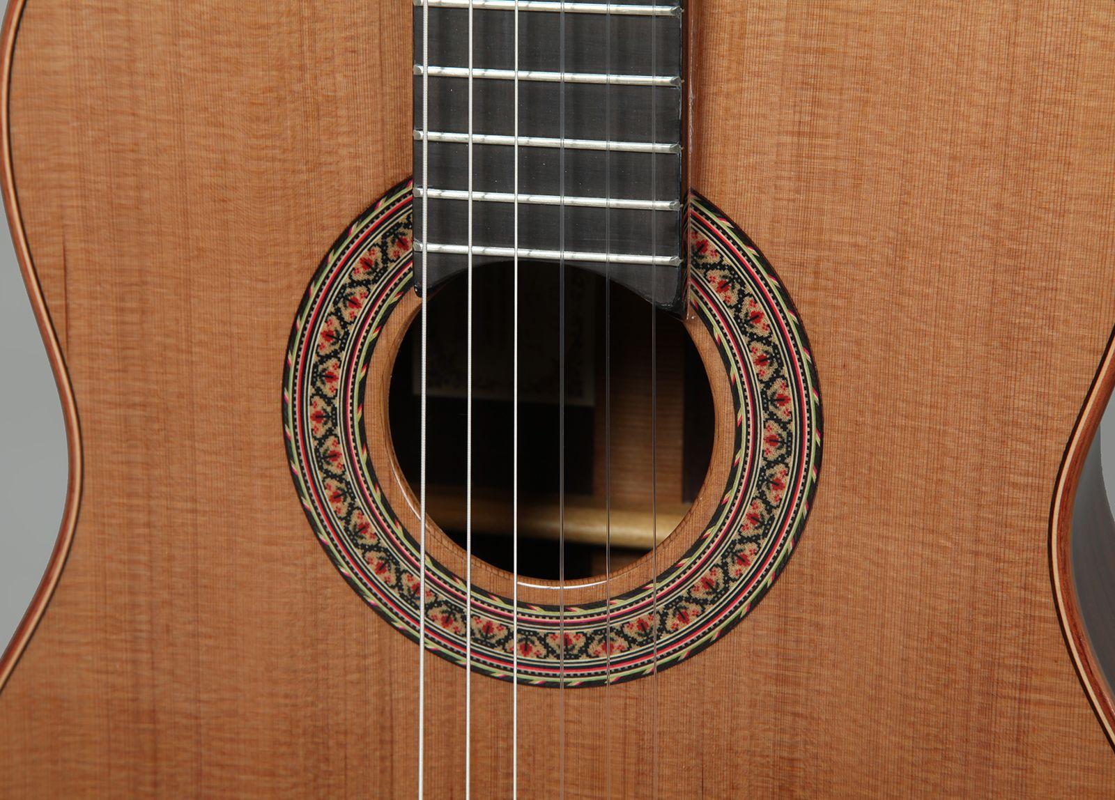 concert_guitar_ii09
