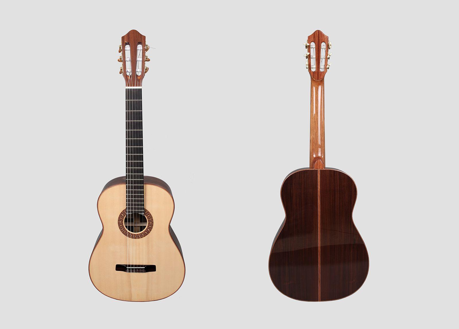 concert_guitar_i01