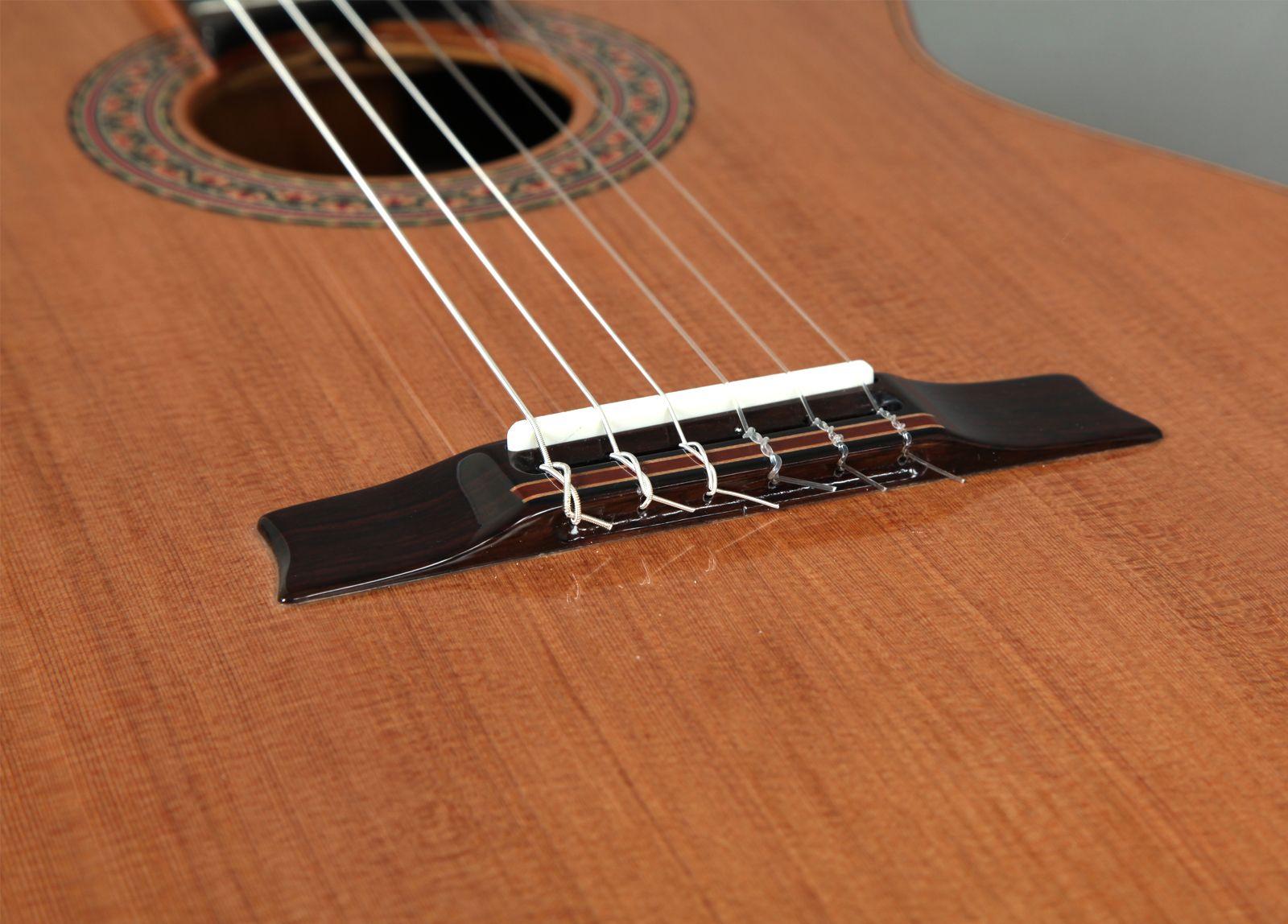 concert_guitar_ii03