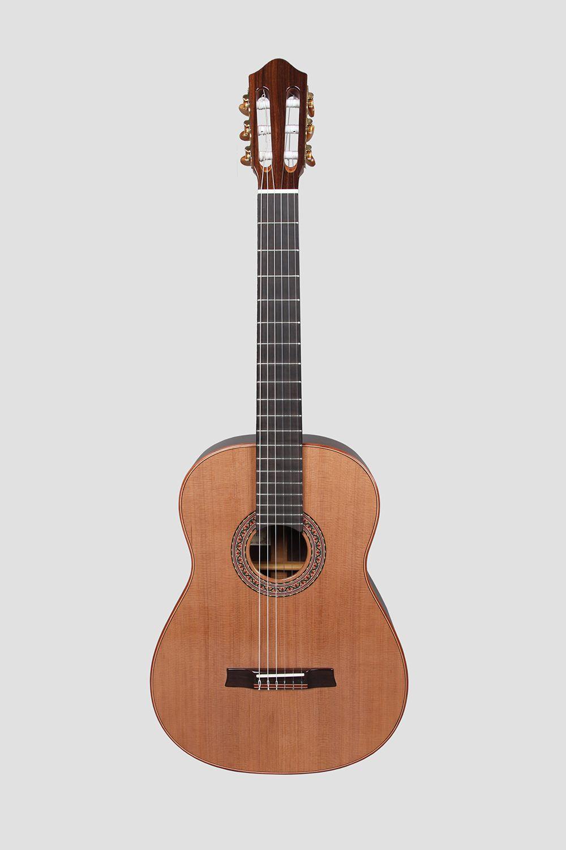 Concert Guitar II
