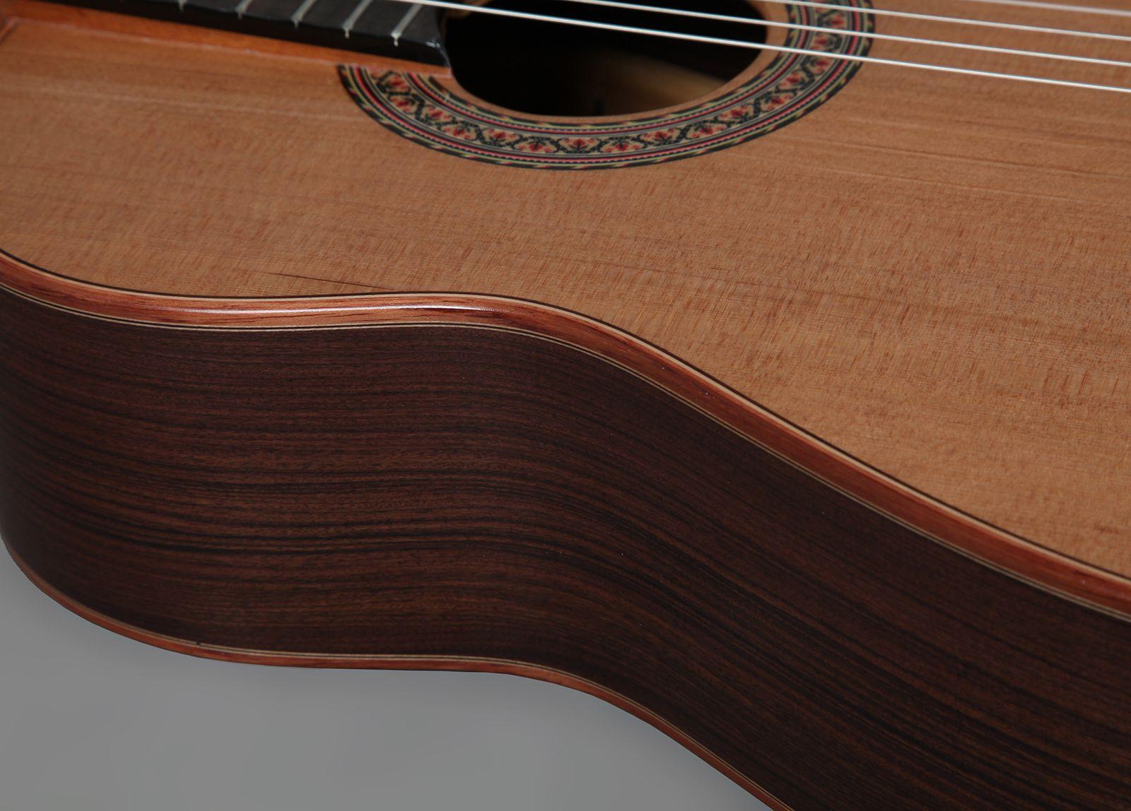 concert_guitar_ii02