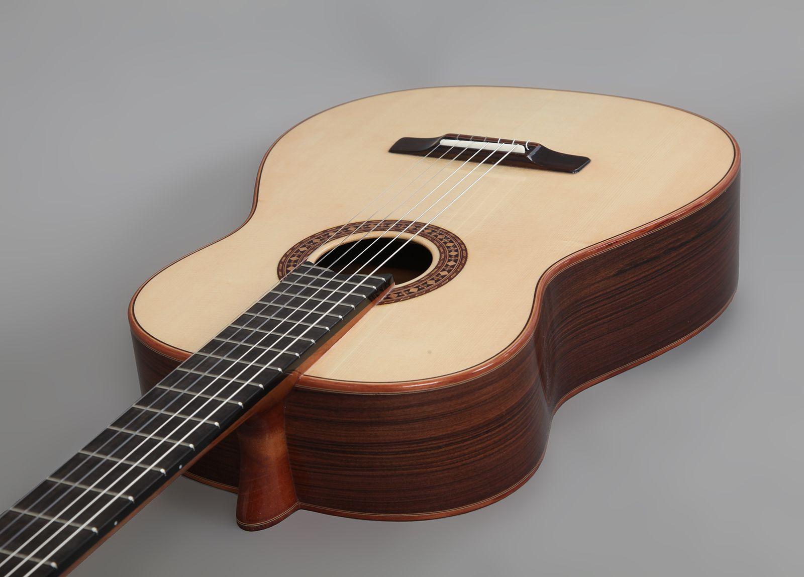 concert_guitar_i02