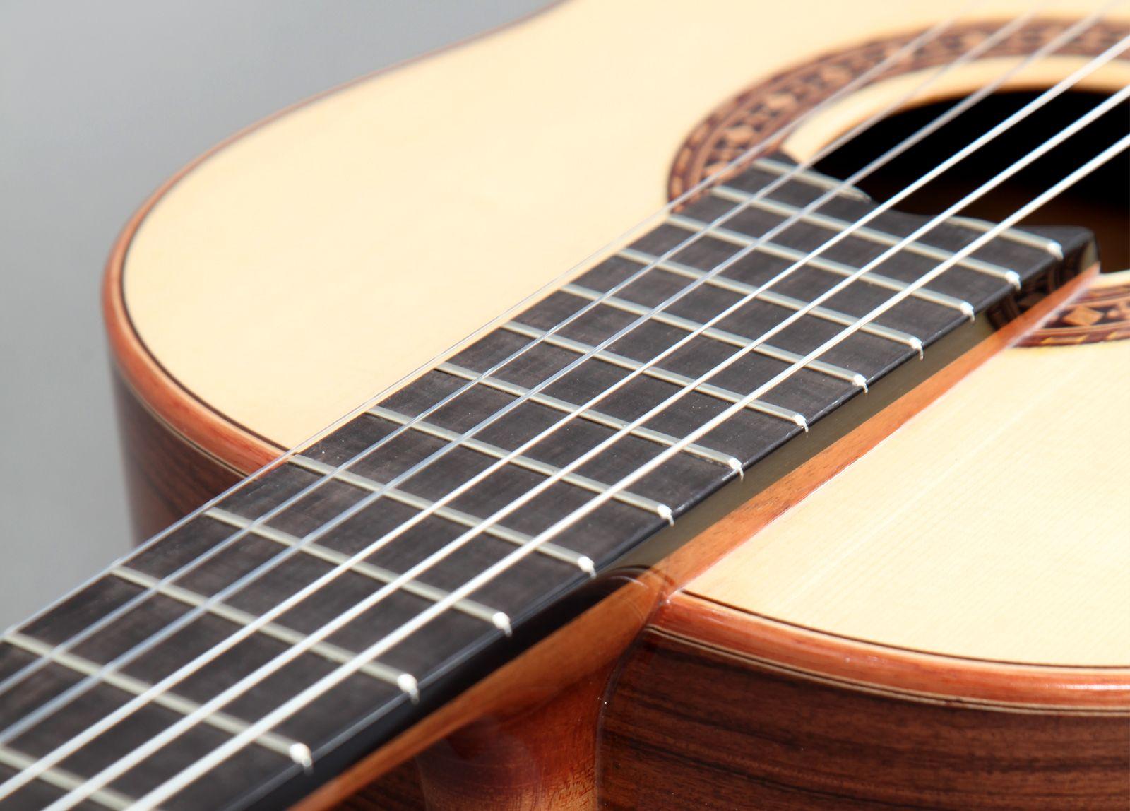 concert_guitar_i05