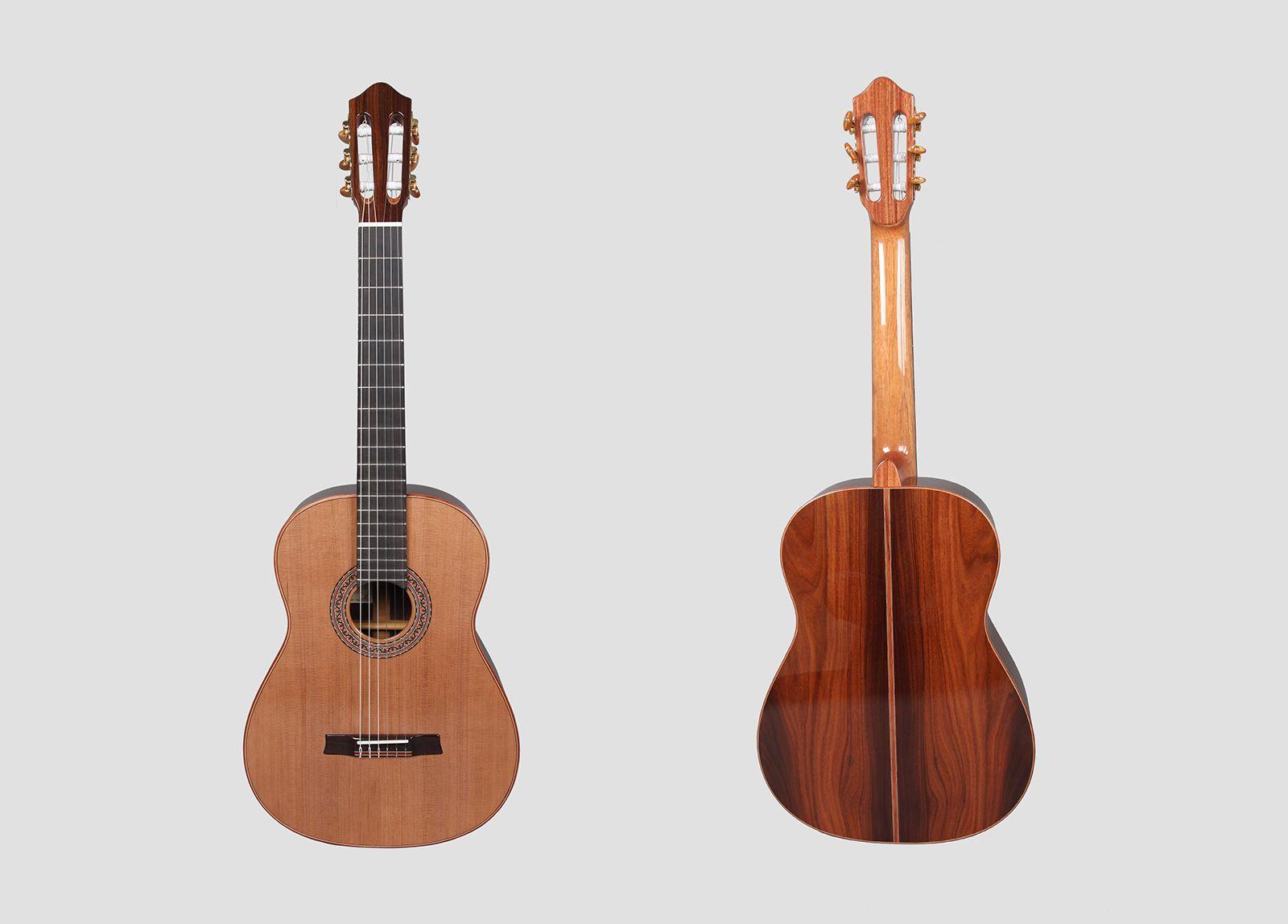 concert_guitar_ii01